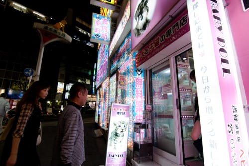 "Shoppers enter an illuminated pet shop next to a ""free information center"" on Dogenzaka."