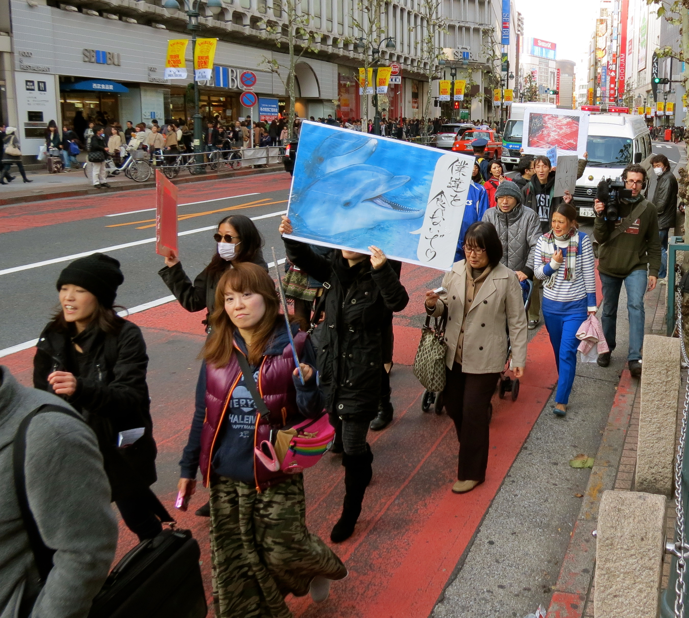 """Update: Japanese Citizens Protest Against Japan's Dolphin Hunting and Whale """"Research"""""""