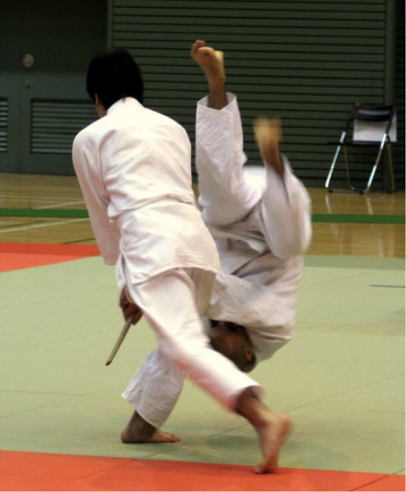 The author is thrown during the 2012 National Yoshinkan Demonstration