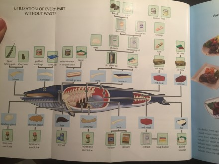 Japan's Institute for Cetacean Research (ICR) tells shows you the many ways to utilize whale meat!