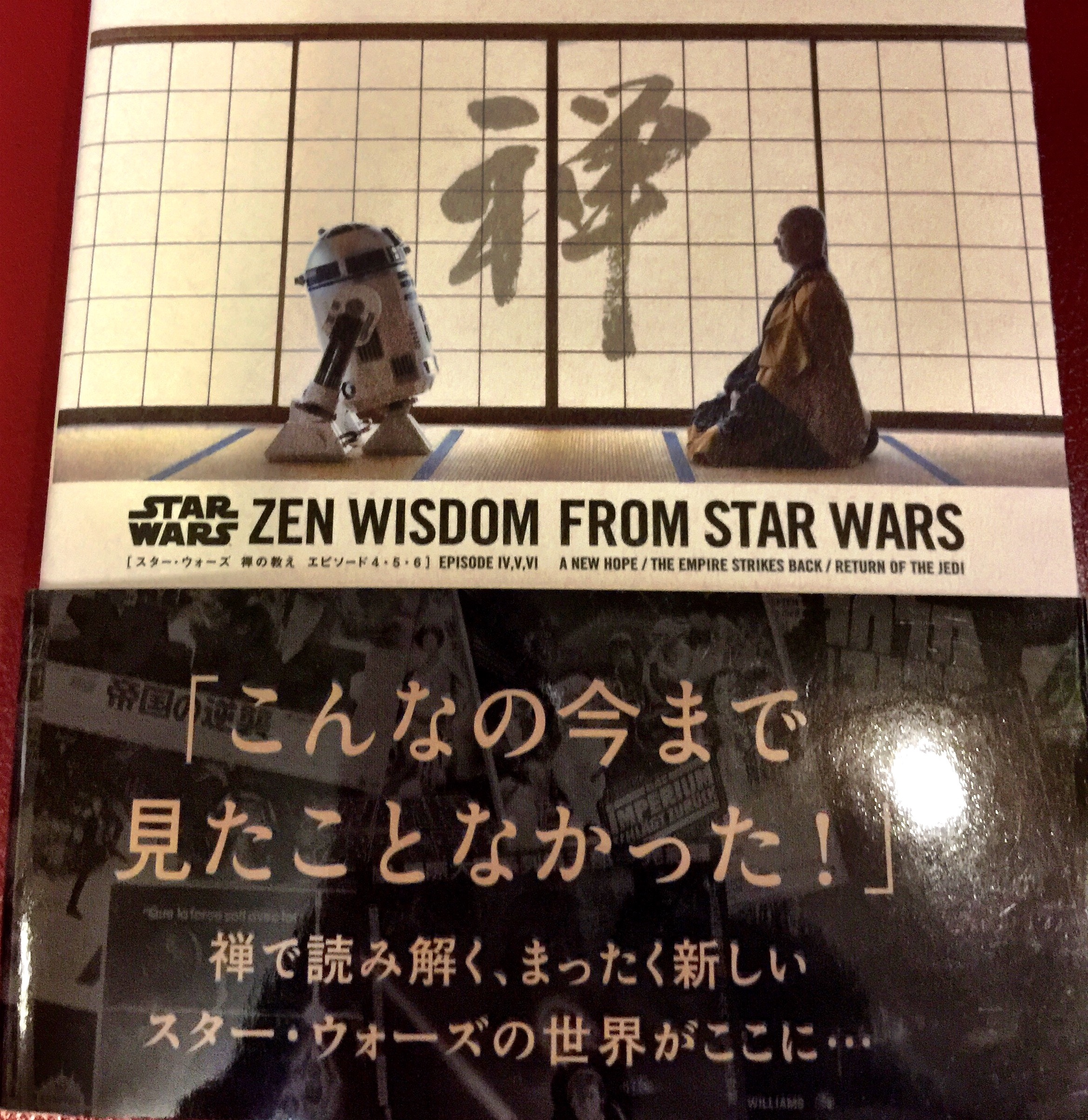 May the Force Be With You (May 4th) Zen Wisdom From Star Wars! The Dao of Jedi
